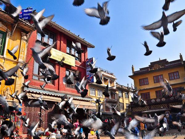 nepal trekking guide pdf free download