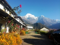 A typical house with view at Ghandruk