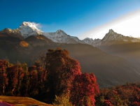 Amazing view of Annapurna South, Hiuchuli and Fishtail from Tadapani