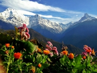 View of Annapurna from Ghandruk Village