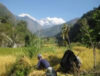 Ganesh Himal and Tamang Heritage Trail Trekking