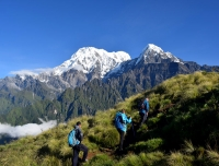Hike Mardi Himal with Guide in Himalaya