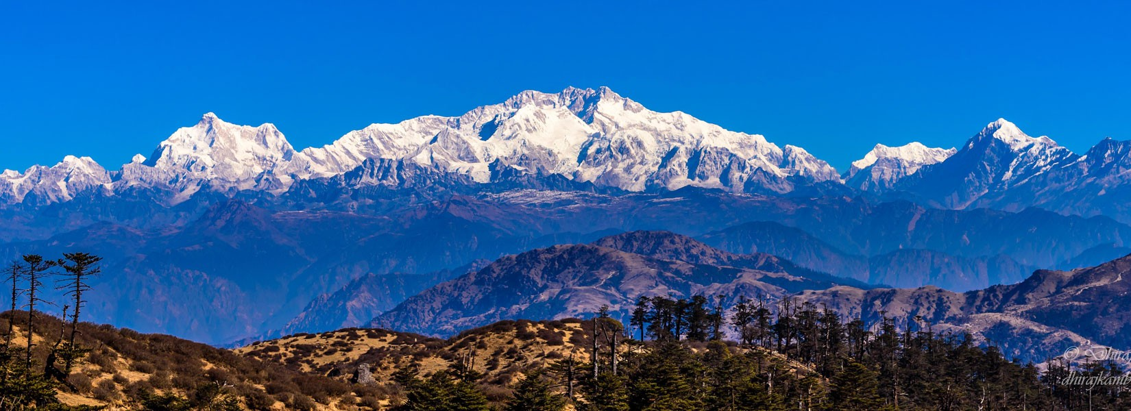 View of Kanchenjunga Range from Sandakphu Hill Ilam Nepal