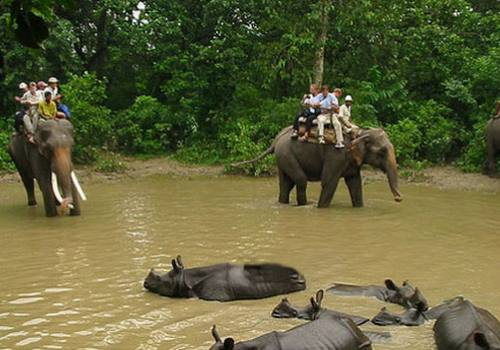 Nepal Culture and Wildlife Adventure Tour